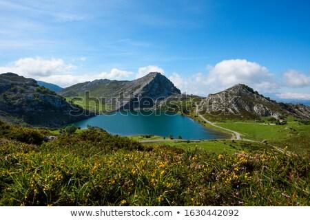 Jezioro Hiszpania lata zielone góry wakacje Zdjęcia stock © lunamarina