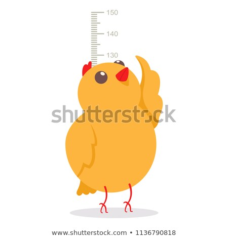Growth chart ruler with little chicks Stock photo © colematt