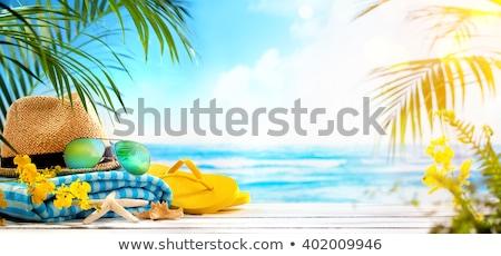 Seashells on summer beach Stock photo © neirfy