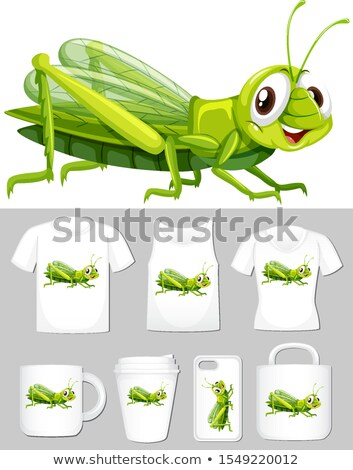 Graphic of cricket on different product templates Stock photo © bluering