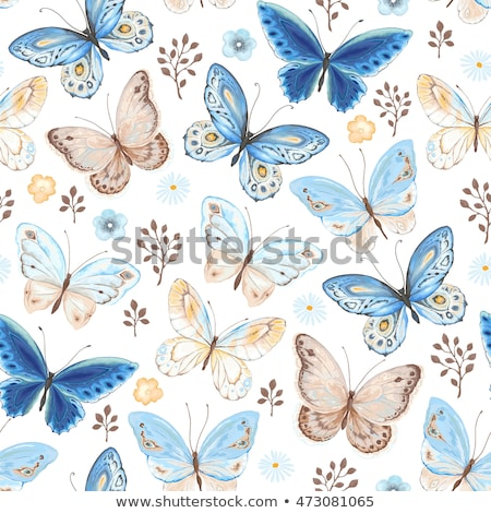 White seamless pattern with blue butterflies Stock photo © blackmoon979