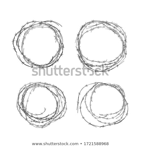 Set of different realistic hanks of metal glossy barbed wire on white Stock photo © evgeny89