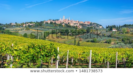 Tepeler etrafında Toskana Bina manzara alan Stok fotoğraf © wjarek