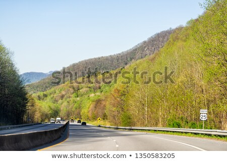 Mountain valley on sunny day. Great Smoky Mountains, North carol Stock photo © alex_grichenko
