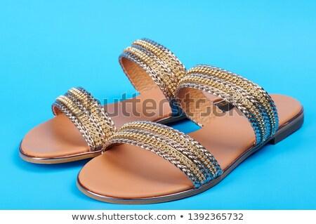 Par azul sandalias ilustración blanco fondo Foto stock © bluering