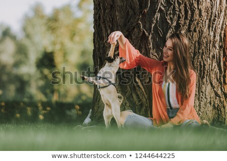 cheerful playful woman sitting and giving bone to her dog stock photo © deandrobot