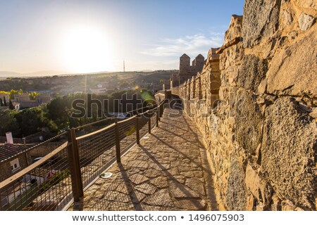 Avila, in spain, wall and defensive towers Stock photo © Photooiasson