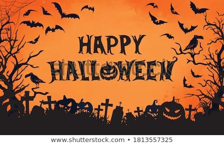Хэллоуин · вечеринка · Flyer · тыква · кладбище · оранжевый - Сток-фото © articular