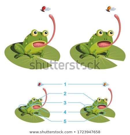 Faminto desenho animado joaninha ilustração olhando animal Foto stock © cthoman