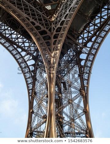 Эйфелева башня Франция тюльпаны Париж Сток-фото © neirfy
