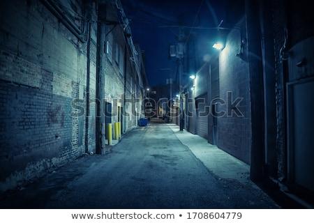 Rua luz antiquado árvores vidro urbano Foto stock © vrvalerian