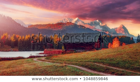 Sunlit autumn meadow Stock photo © pashabo