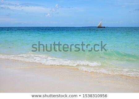 Mavi yelkencilik tekne beyaz plaj gökyüzü Stok fotoğraf © jacojvr