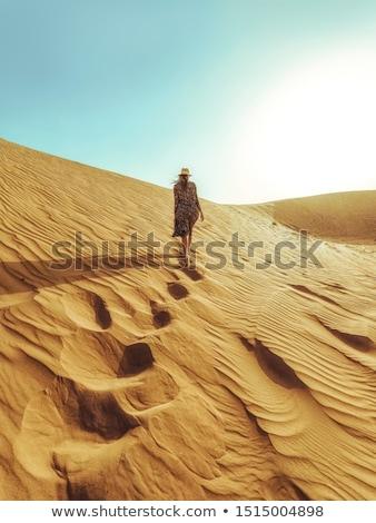 mulher · jovem · caminhada · deserto · belo · sorrir · paisagem - foto stock © dashapetrenko
