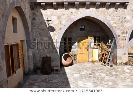 Middellandse zee turks huizen stad water boom Stockfoto © kravcs