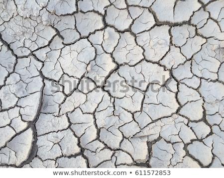 Dry soil with cracks Stock photo © mycola