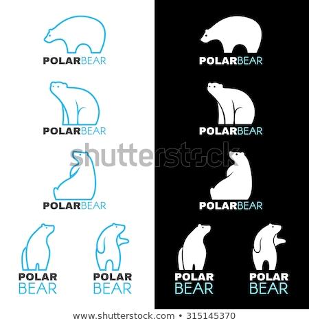 Polar bear icon Stock photo © gladiolus