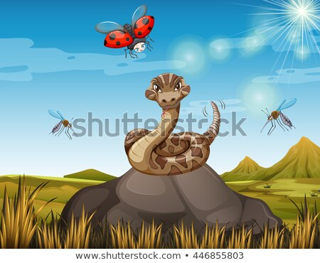 wild snake on the rock with many bugs stock photo © bluering
