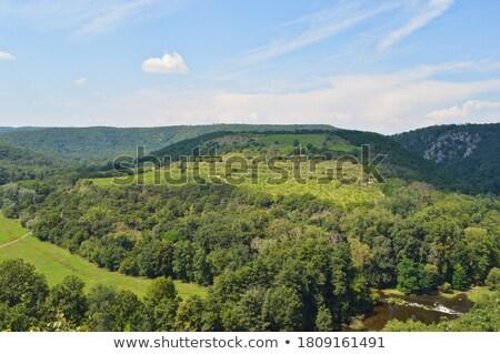 Sobes Moravian vineyard Stock photo © hamik
