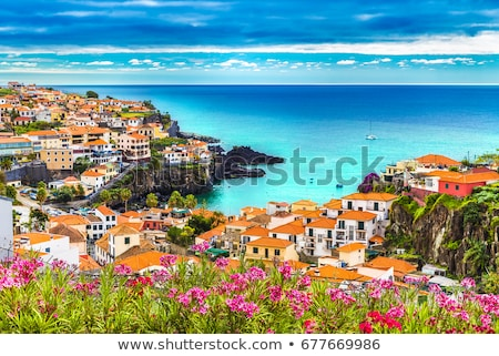Coastal town at twilight. Portugal Stock photo © joyr