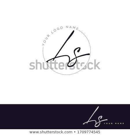 özel · marka · şirket · şablon · logo - stok fotoğraf © vector1st