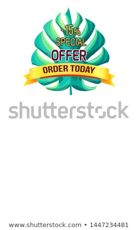 Special Offer Order Today with 15 Off Promo Logo Stock photo © robuart