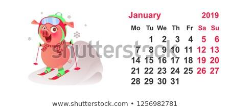 Suino sci simbolo anno calendario griglia Foto d'archivio © orensila