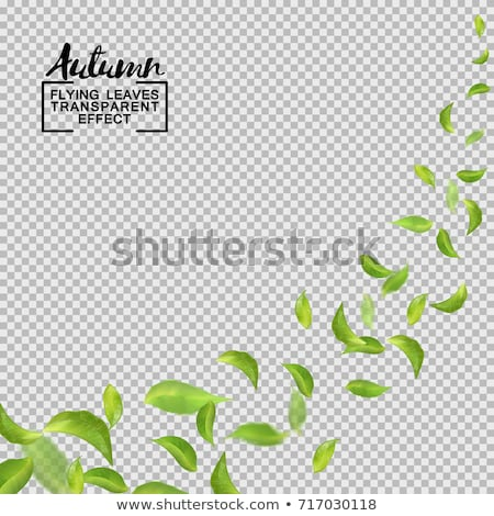 banner with green blobs transparent background stock photo © adamson