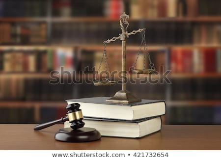 A law book with a gavel  - National Law Stock photo © Zerbor