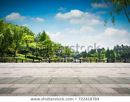 Staw parku ilustracja wody drzewo miasta Zdjęcia stock © colematt