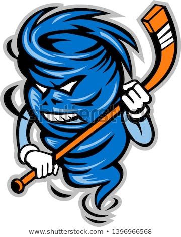 Tornádó jégkorong játékos kabala ikon illusztráció Stock fotó © patrimonio
