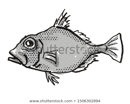 False Dory Australian Fish Cartoon Retro Drawing Stock photo © patrimonio