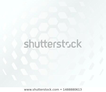 Hexagonal grid white and grey ethereal background. Vector design minimum concept Stock photo © Iaroslava