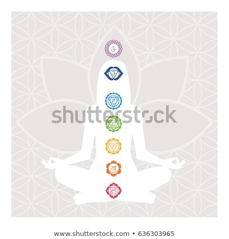 Yoga infographic of the seven meditation chakras Stock photo © cienpies