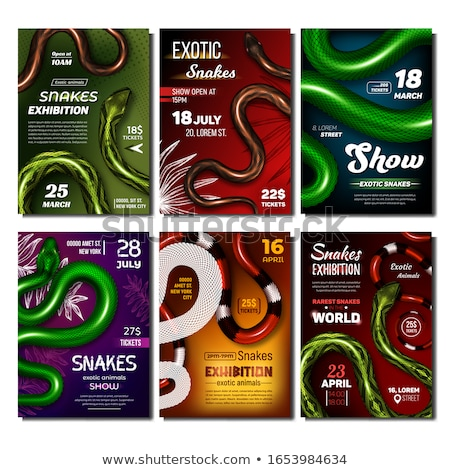 snake with danger poison and bright color vector stock photo © pikepicture