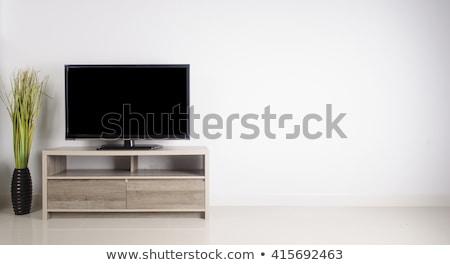 Lapos képernyő LCD televízió nappali belső kirakat Stock fotó © AndreyPopov