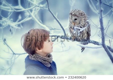 Ragazzo inverno foresta primo piano boschi giocare Foto d'archivio © ElenaBatkova