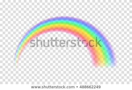 Rainbow. Icon on a green circle. Weather vector illustration Stock photo © Imaagio