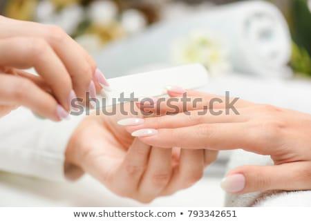 Manicurist Service in Spa Salon Procedure for Women Stock photo © robuart