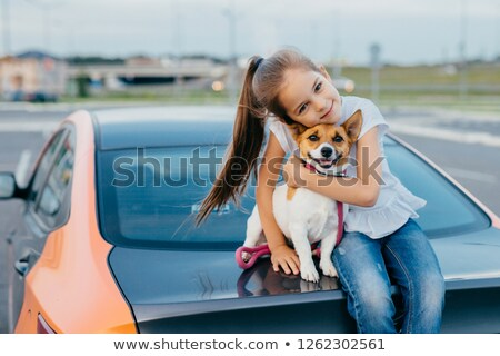 Photo of merry small female kid has pony tail embraces with love her favourite pet, pose at trunk of Stock photo © vkstudio