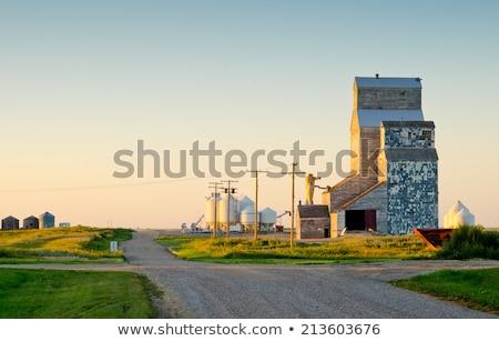 opuszczony · włókien · drewna · przechowywania · saskatchewan · Kanada - zdjęcia stock © pictureguy