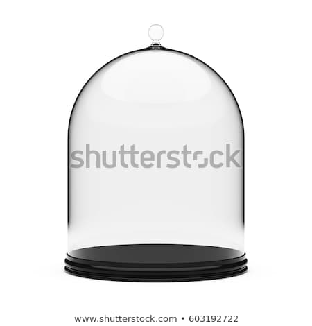 Szkła kopuła stoją 3d ilustracji odizolowany biały Zdjęcia stock © montego