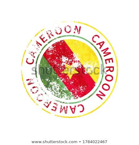 Kamerun felirat klasszikus grunge lenyomat zászló Stock fotó © evgeny89