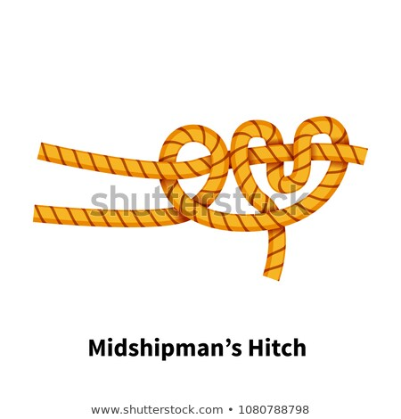 Midshipman's Hitch sea knot. Bright colorful how-to guide on white Stock photo © evgeny89