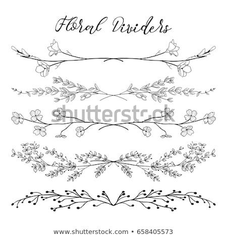 Vintage floral cadre feuille fond noir Photo stock © AbsentA