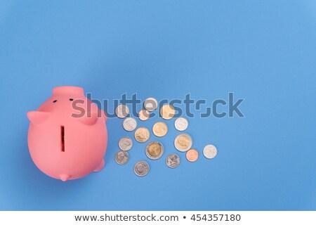 dólares · piggy · bank · mouse · dinheiro · teclado - foto stock © Andriy-Solovyov