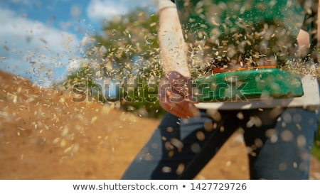 Seeding machine Stock photo © CaptureLight