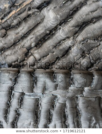old wooden background with dust and burnt vertical boards stock photo © bogumil