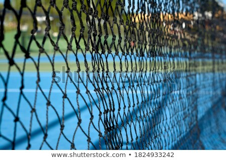 Tennis tribunal gazon Photo stock © mnsanthoshkumar