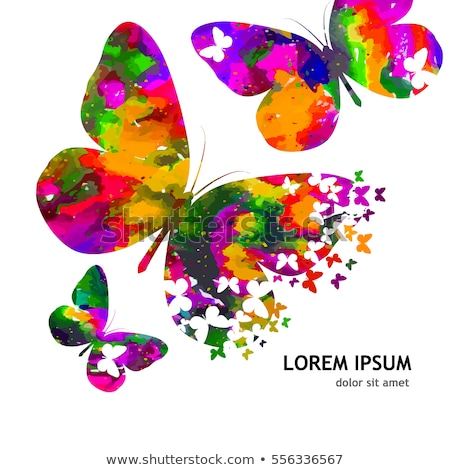 abstract colorful rainbow floral butterfly stock photo © pathakdesigner
